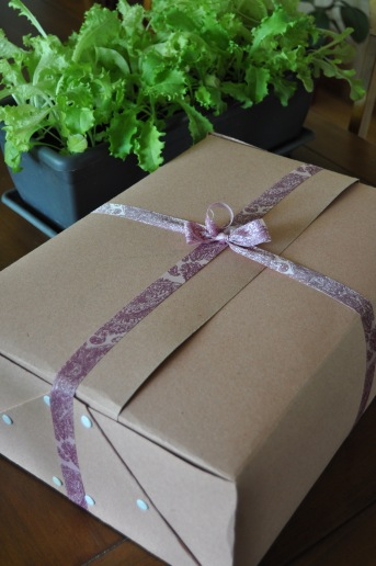 Tegelikult seisab karp ise ka kinni aga nii on lihtsalt nunnum.